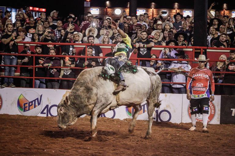 Peão montado em touro, com plateia em volta