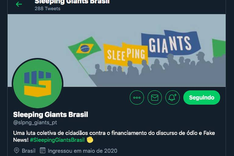 Perfil no Twitter do Sleeping Giants