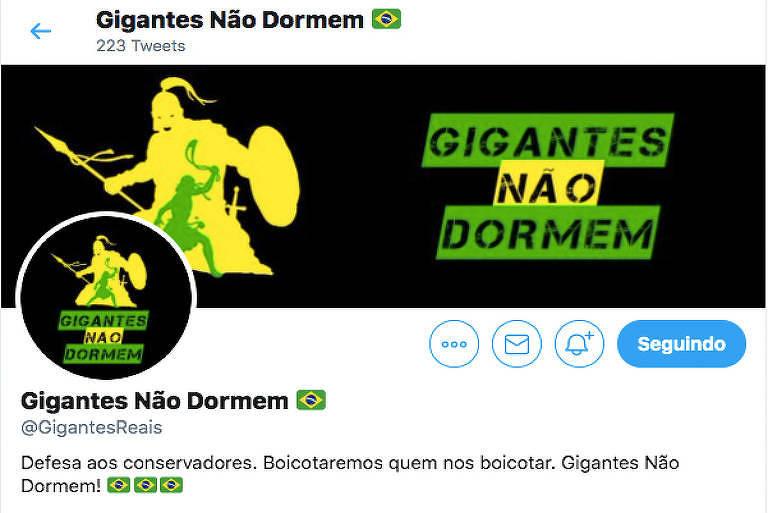Imagem do perfil do Gigantes Não Dormem, considerado de direita e conservador