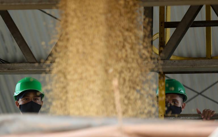 Caminhão é carregado com soja em um dos silos da cooperativa