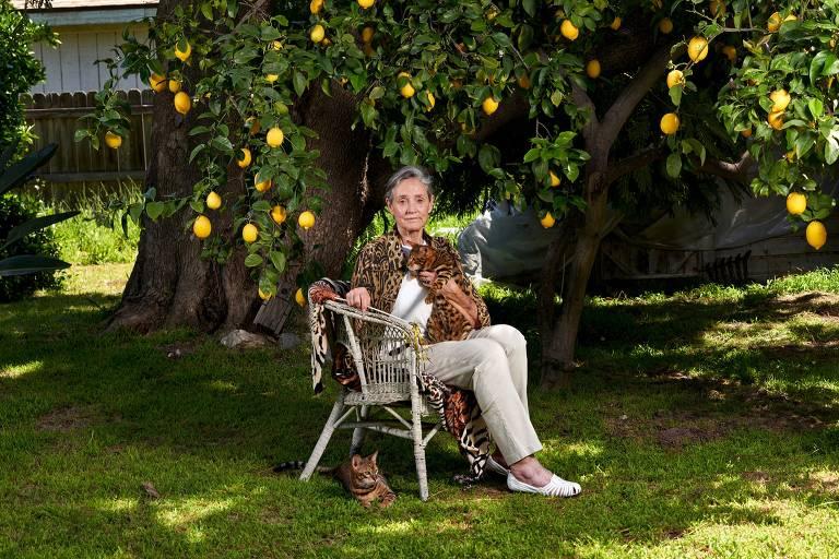 A criadora Judy Sugden posa com gatos da raça toyger