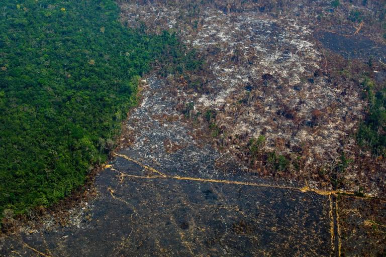 Foto aérea de 28 de agosto de 2019 mostra o desmatamento na Reserva Biológica Nascentes da Serra do Cachimbo, no Pará