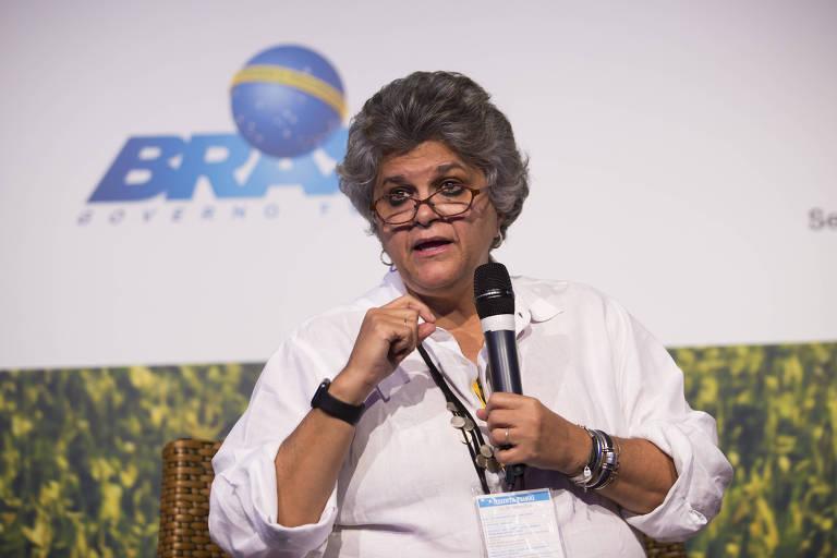 Izabella Teixeira, ex-ministra do Meio Ambiente, participa de evento da Folha em 2017