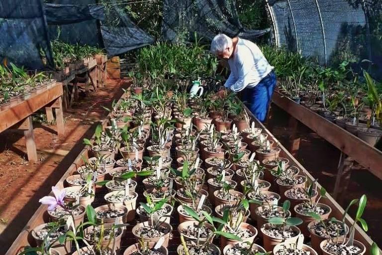 O orquidófilo Cláudio Alencastro com sua coleção de orquídeas em Porto Alegre (RS)