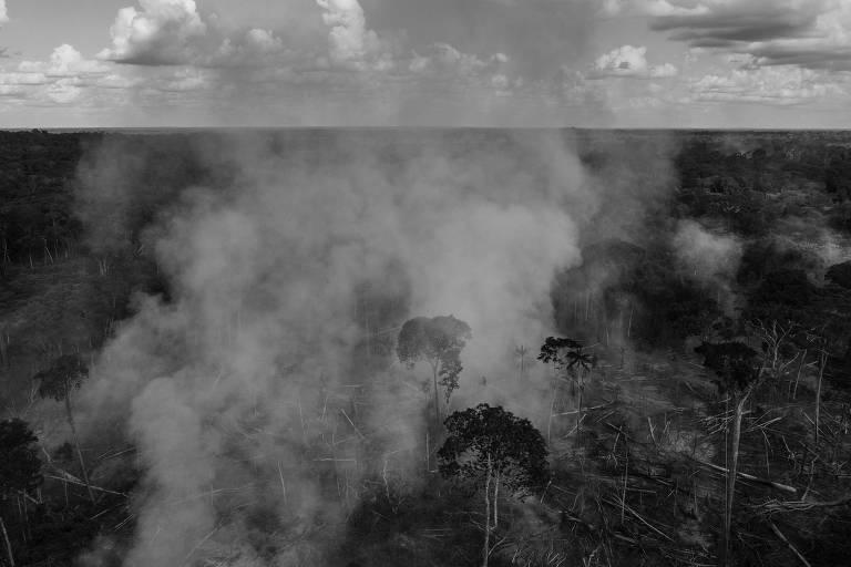 Queimada em área desmatada no seringal Albracia, dentro da Reserva Extrativista Chico Mendes, em Xapuri (AC), após o ministro Meio Ambiente, Ricardo Salles, suspender fiscalização da reserva. A área havia sido embargada pelo ICMBio em uma fiscalização