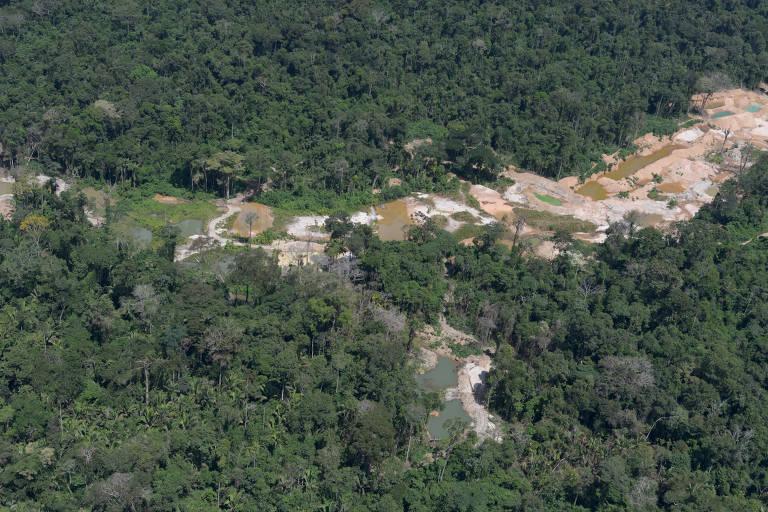 Garimpo na Floresta Nacional de Altamira, no Pará