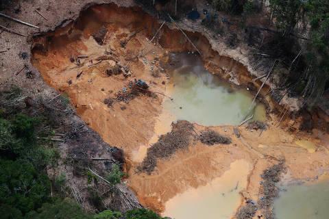 Amazônia tem 14º mês seguido de aumento de desmate, e derrubada em junho é a maior desde 2016