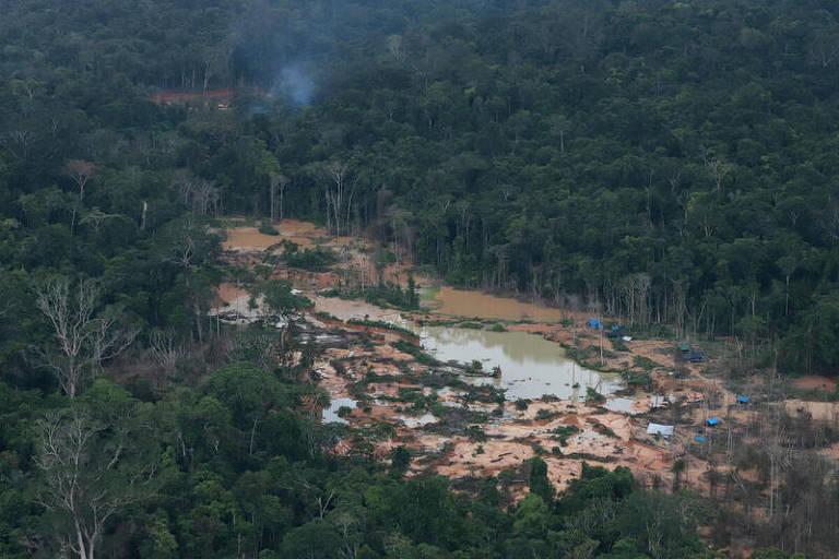 Imagens aéreas mostram garimpo ilegal na Amazônia