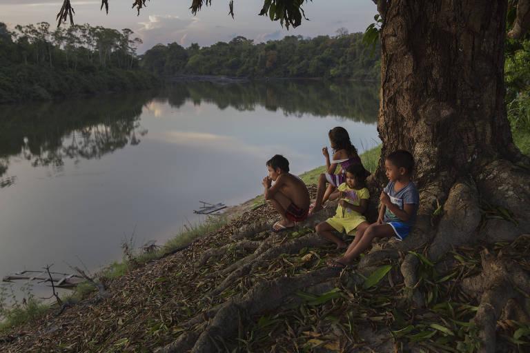 Crianças brincam embaixo de uma árvore na comunidade Rio Novo, na Reserva Extrativista Rio Iriri
