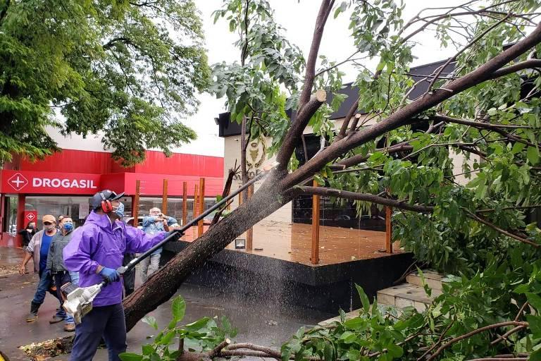 Servidores da prefeitura fizeram bloqueios em vias para a retirada de árvores que caíram com o temporal que atingiu Presidente Prudente