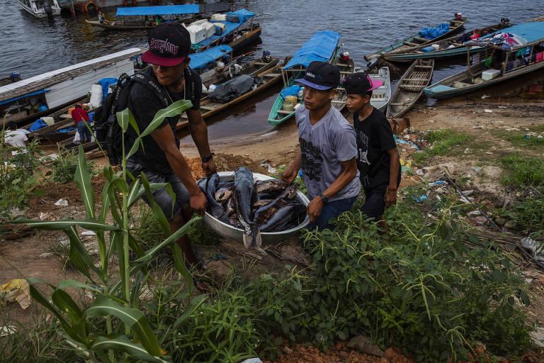 Indígenas descarregam peixe no porto de São Gabriel da Cachoeira (AM)