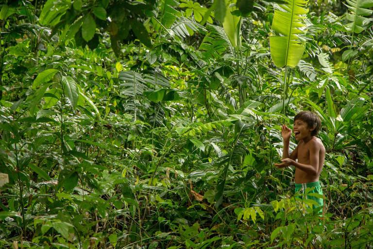 União Amazônia Viva realiza ações de enfrentamento à Covid-19 entre os povos da floresta