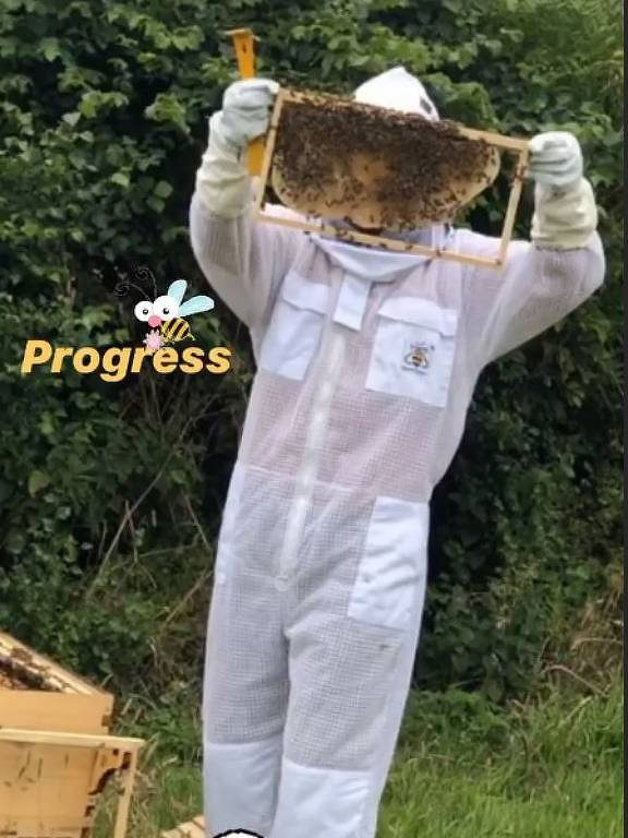 David Beckham na apicultura