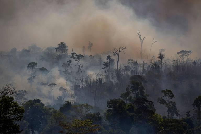 Após reunião com Mourão, fundo nórdico diz que falta plano sobre desmatamento