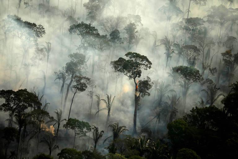 Fumaça de queimada na região amazônica próxima a Porto Velho, Roraima