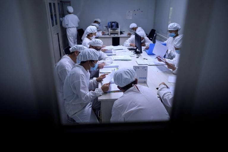 Pesquisadores trabalham em laboratório da Yisheng Biopharma em Shenyang, na China