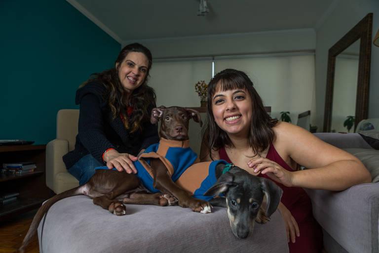 Famílias adotam pets em busca de companhia na quarentena