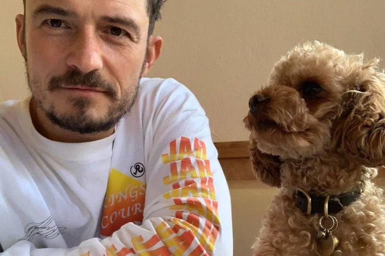 Orlando Bloom com seu cachorro de estimação desaparecido