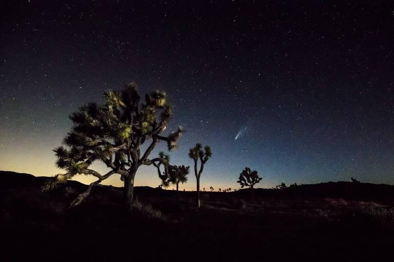 Cometa Neowise passa perto da Terra