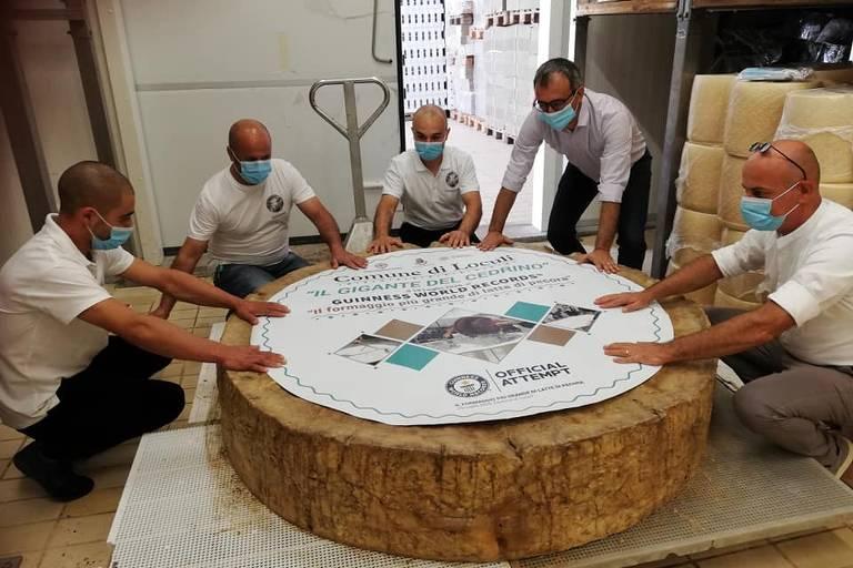Cidade italiana cria o maior queijo pecorino do mundo, com 598,5 kg