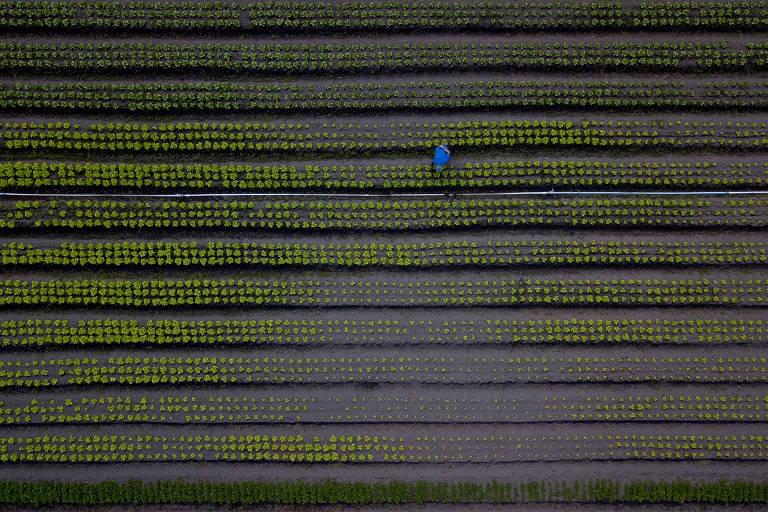 Vista aérea do Núcleo Rural Vargem Bonita, em Brasília