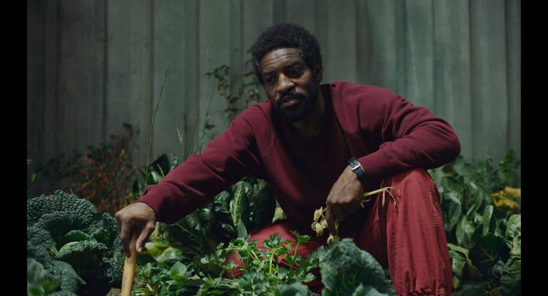 Um homem está agachado numa sala cercado por plantas