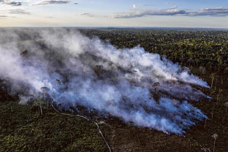 Queimada em área recentemente desmatada para formação de pasto dentro da Terra Indígena Trincheira Bacajá, no Pará