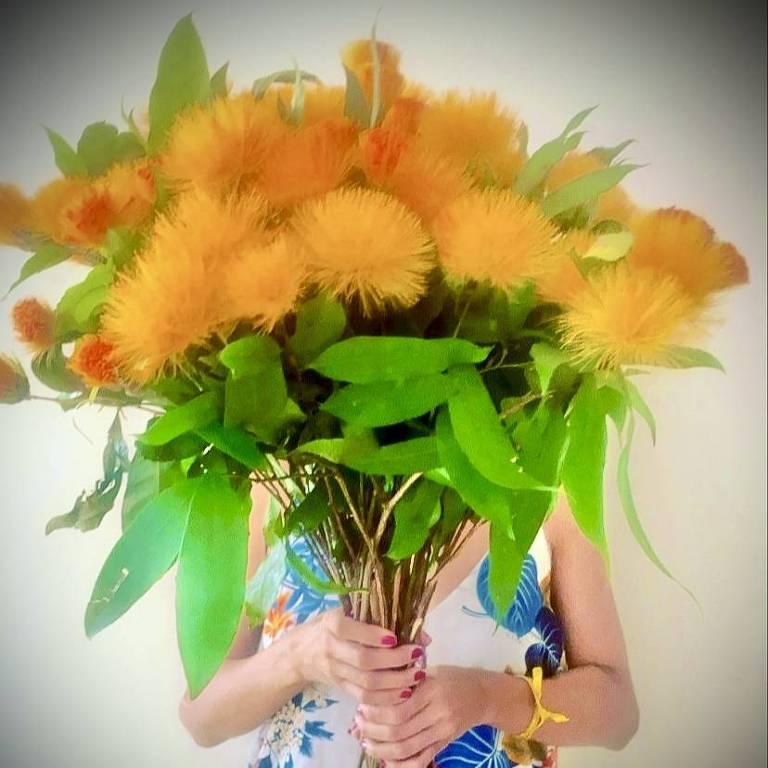 A florista Eduarda Ribeiro, em sua casa-ateliê Pólen - Flores e Plantas, exibe flores pela democracia, no Rio