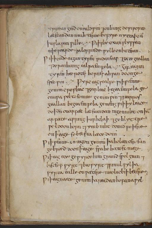 Livro compilado há 1.200 anos contém poção que funciona contra bactérias