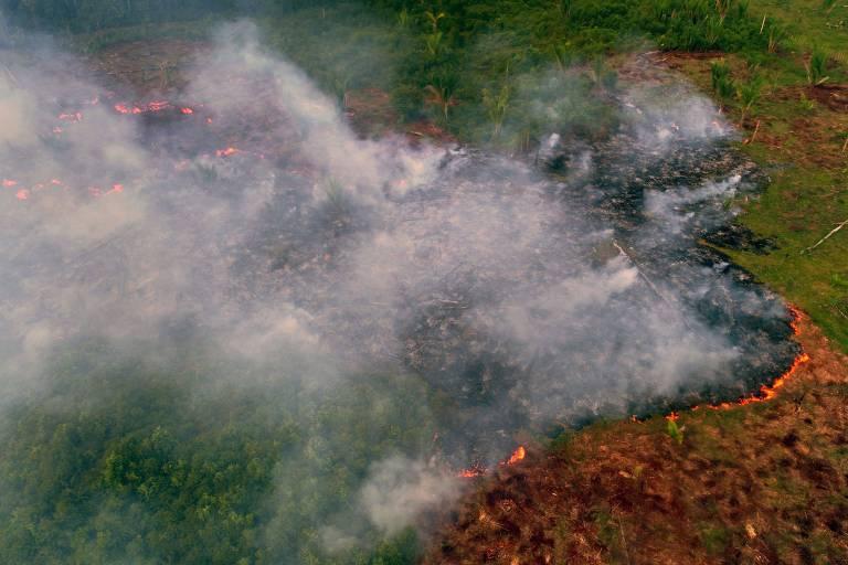 Imagem aérea mostra área verde pegando fogo; no canto inferior direito da foto, verde está todo queimado