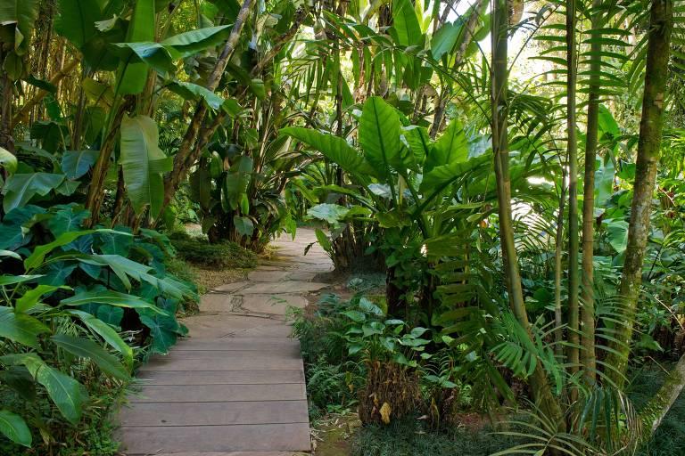 Jardim do Instituto Inhotim, em Brumadinho (MG)