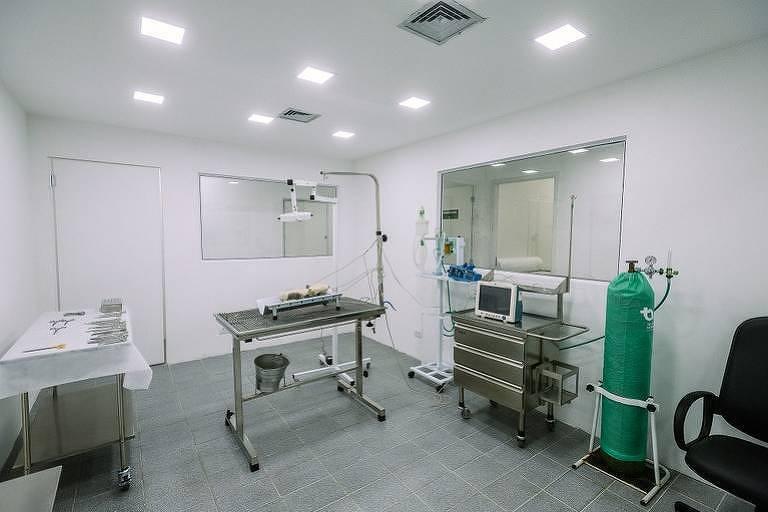 Hospital veterinário público em Santo Amaro