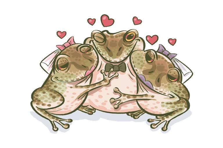 Ilustração do sapo-bode e suas duas esposas
