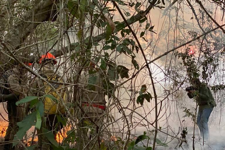 O fotógrafo Lalo de Almeida fotografa queimada em Poconé (MT)