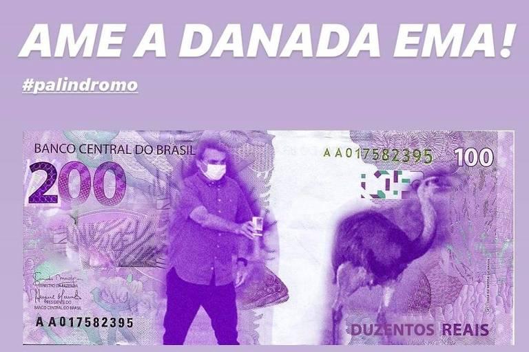 """Montagem de cores roxo e rosa, com cédula de real que mostra Jair Bolsonaro ao lado de uma ema. Acima, o letreiro """"Ame a danada ema!"""""""