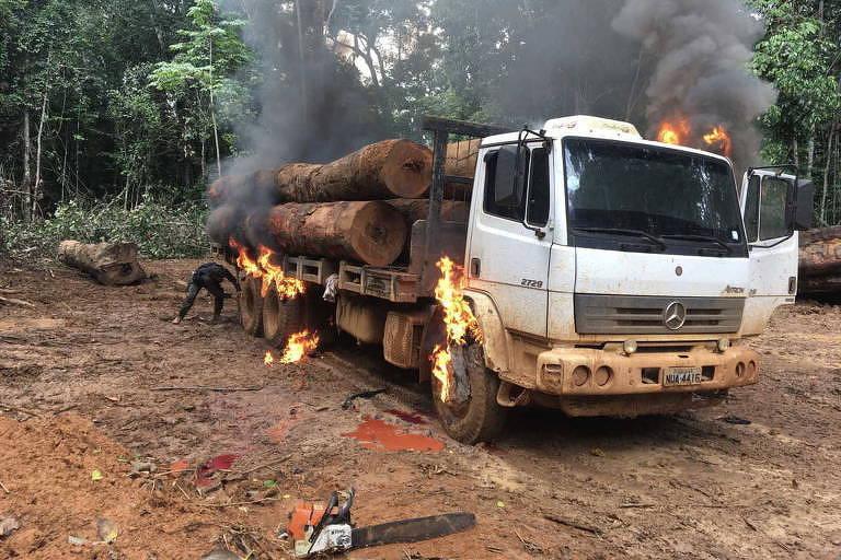Caminhões com toras que foram apreendidos e destruídos em terra indígena pelo Ibama