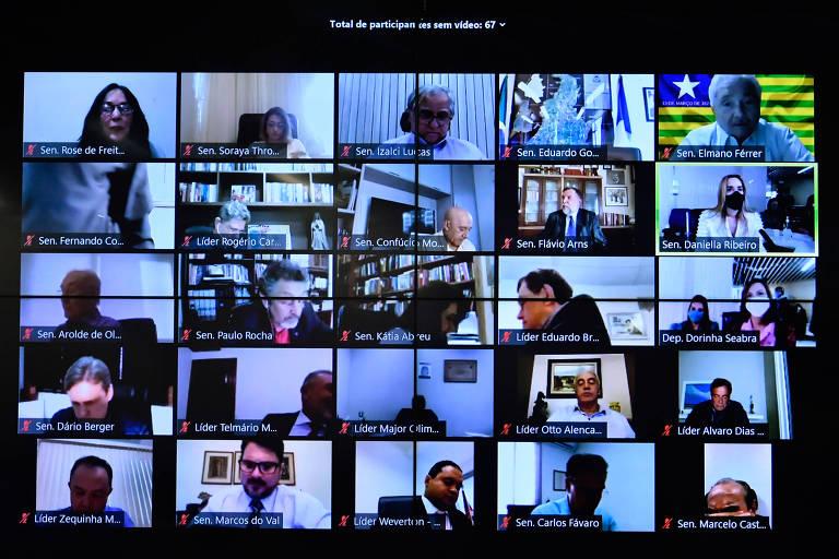 tela dividida com imagens de senadores, que votaram por vídeo de modo remoto