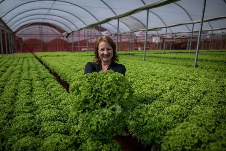 Mulher segura pé de alface, em meio a plantação de hortaliças, e sorri