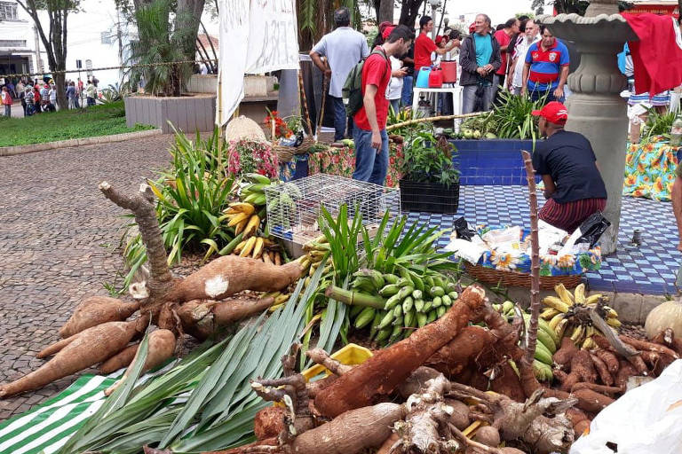 Entidades dos EUA e Brasil enviam carta a Romeu Zema contra despejo de famílias do Quilombo Campo Grande