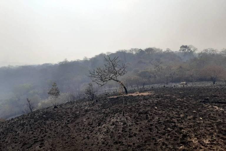 Fogo em Chapada dos Guimarães já consumiu quase 38 Ibirapueras