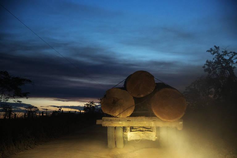 Caminhão carregando toras de madeira circula em uma estrada vicinal no entorno da Terra Indígena Trincheira Bacajá, no Pará, próximo à vila Sudoeste