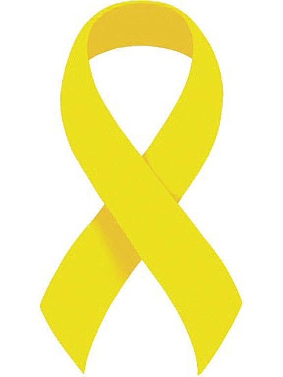 Campanha pela democracia e pelo setembro amarelo