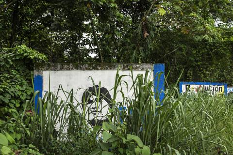 Mural com o rosto do ex-presidente Evo Morales em estrada no Chapare
