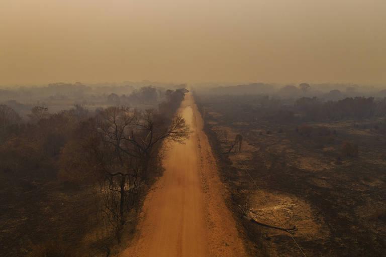 Ensaio fotográfico na Transpantaneira mostra paisagem de chamas, fumaça e cinzas
