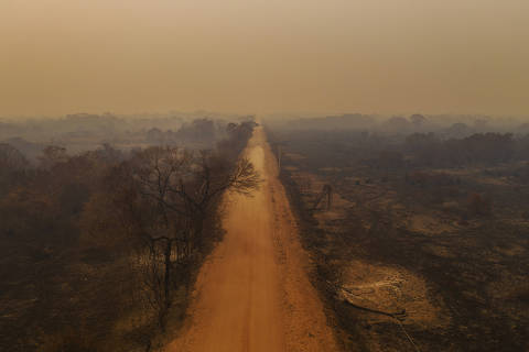 Fogos em nove fazendas destruíram 141 mil hectares no Pantanal