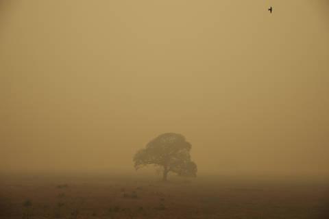 Pocone, MT. 07/09/2020. TRANSPANTANEIRA. Paisagem coberta pela fumaa ao longo da rodovia Transpantaneira. O Pantanal foi o bioma mais atingido proporcionalmente pelas queimadas esse ano, com quase 10% de sua area consumida pelo fogo.  ( Foto: Lalo de Almeida/ Folhapress ) COTIDIANO *** EXCLUSIVO FOLHA***