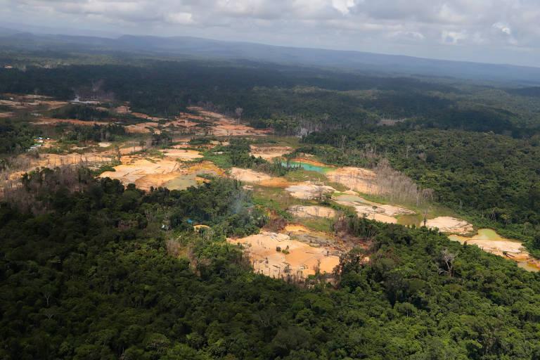 Floresta cravejada de áreas abertas para mineração