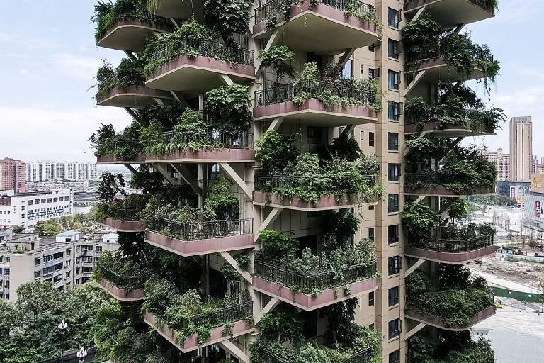 Plantas invadem prédios na China e moradores abandonam imóveis
