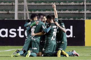 Soccer - Copa Libertadores - Bolivar v Palmeiras