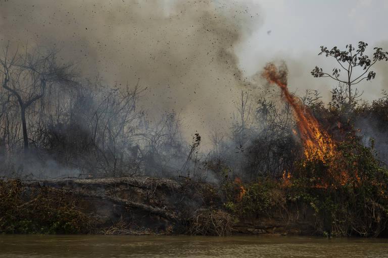 Incêndio florestal às margens do rio Cuiabá visto da reserva; árvores e troncos secos, e uma labareda e fumaça vindos da direita